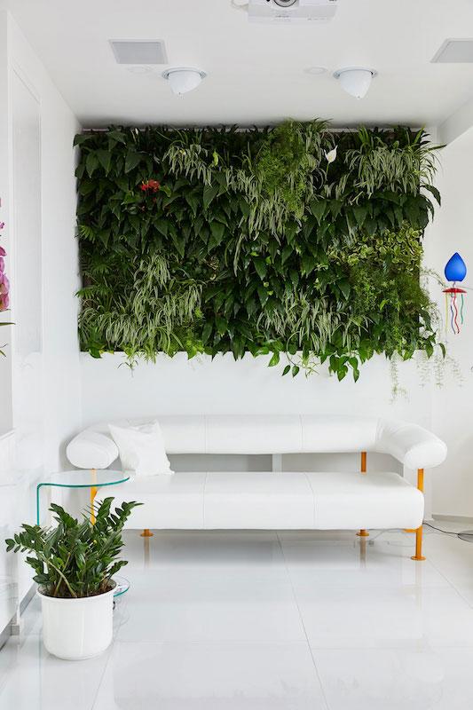 perete de plante in apartament amenajare poze