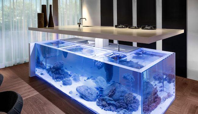 bucatarie-cu-acvariu-bucatarie-moderna-Ocean-Kitchen-by-Robert-Kolenik_1