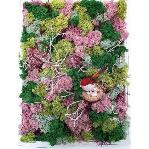 Tablou Licheni decorativi verde tablou cu iarba