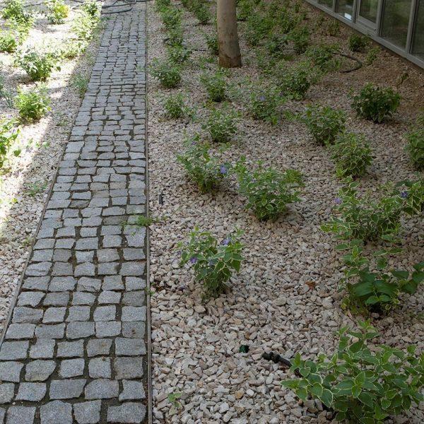 Piatra Cubica Granit Gri Sare si Piper Natur 5 x 5 x 5cm