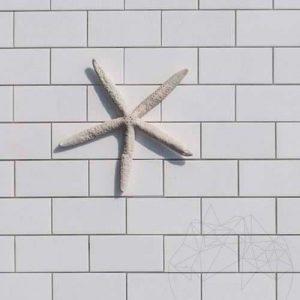 Mozaic Marmura Thassos Polisata 5 x 10 cm - Lichidari stoc