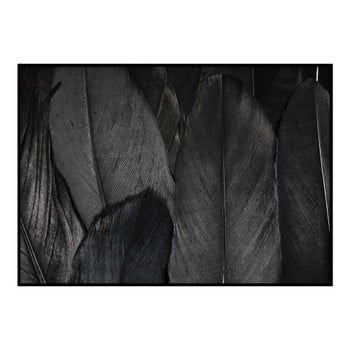 Poster DecoKing Feathers Black, 50 x 40 cm