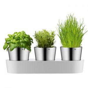 Set 3 ghivece WMF Herb