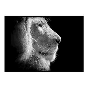 Poster DecoKing Lion King, 50 x 40 cm, negru - alb