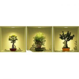 Set autocolante cu efect 3D Ambiance Bonsai Trees On Spot, 3 buc.
