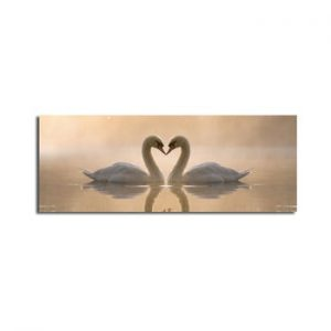 Tablou pe panza Swan Love, 90 x 30 cm
