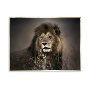 Tablou imprimat pe panza Styler Golden Lion, 115 x 87 cm