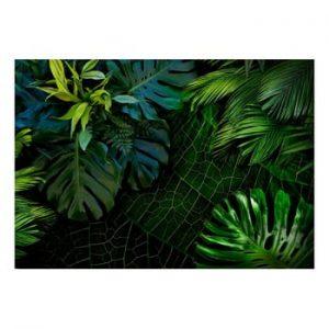 Tapet format mare Bimago Dark Jungle, 400 x 280 cm