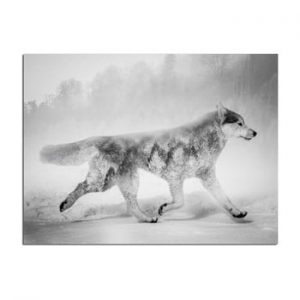 Tablou Styler Canvas Nordic Wolf, 75 x 100 cm