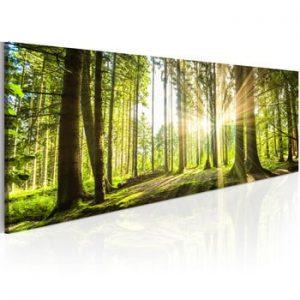 Tablou pe panza Bimago Daylight 135 x 45 cm
