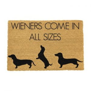 Covoras intrare din fibre de cocos Artsy Doormats Weiners Come In All Sizes, 40 x 60 cm