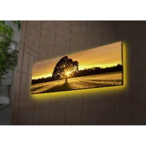 Tablou cu LED-uri Dione, 90 x 30 cm