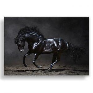 Tablou Styler Canvas Silver Uno Horse, 85 x 113 cm